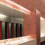 Toilet mirror, North Oxford